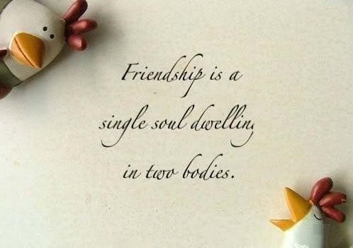 Happy Friendship Day Whatsapp Status & Messages 2016