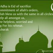 Bakra Eid ul Adha mubarak Whatsapp Status & Messages