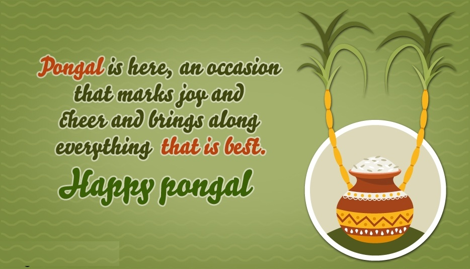 Pongal Whatsapp Status & Messages 2018