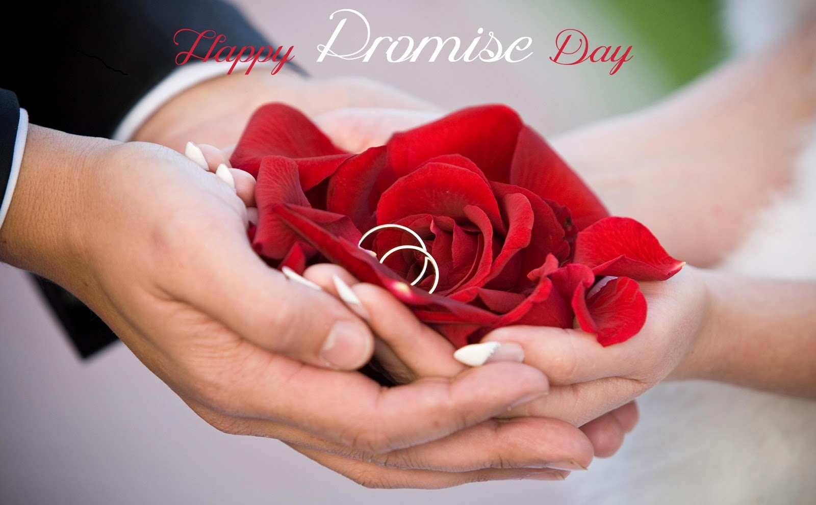Wallpaper download for whatsapp - Download Promise Day Images For Whatsapp Dp Profile