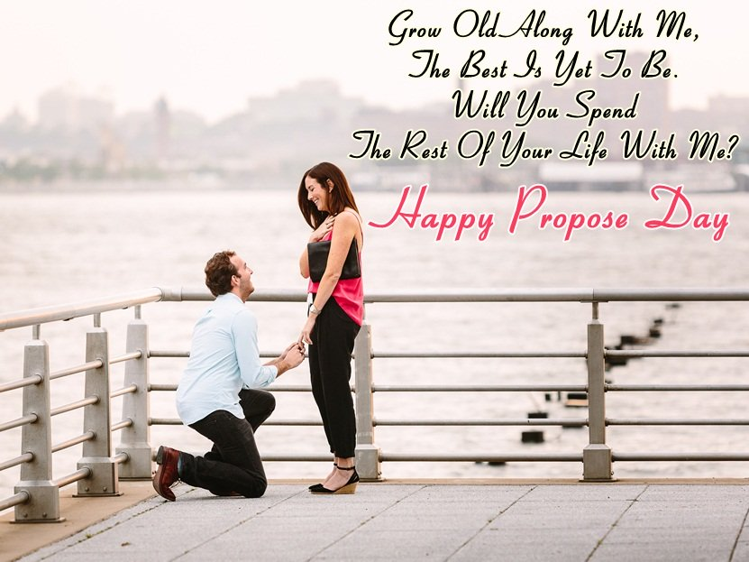 Propose Day Images For Whatsapp Dp Profile Wallpapers Free