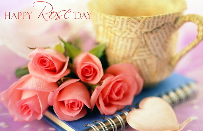 Rose Day Images For Whatsapp Dp Profile Wallpapers Free Download