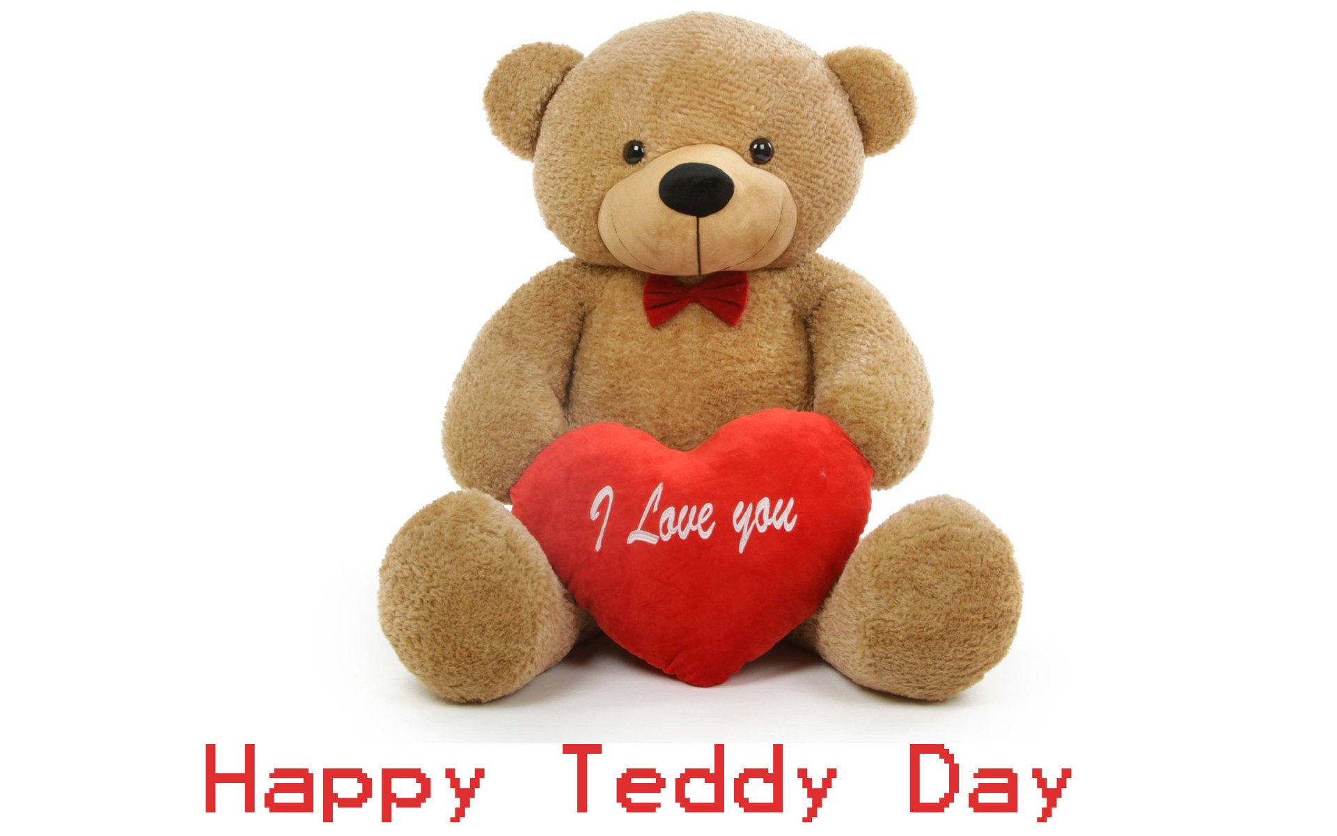 teddy day images for whatsapp dp profile wallpapers u2013 free