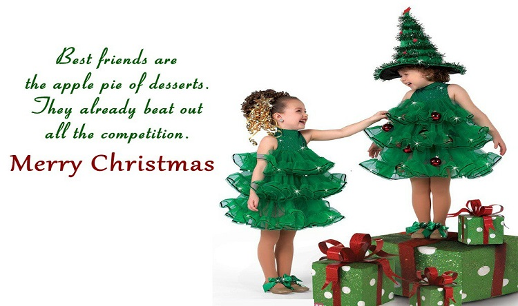 Merry Christmas Poems for Family & Friends
