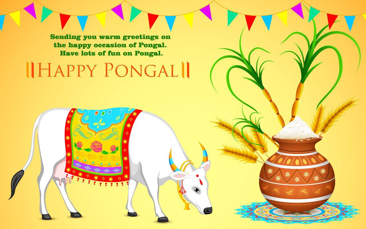 Pongal Whatsapp Status & Messages