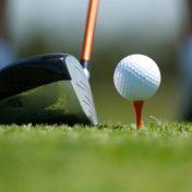 Longest Hitting Driver In Golf